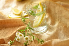 Drink with lemon and mint Stock Photography