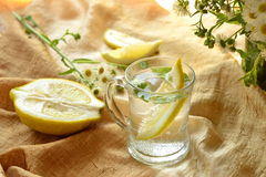 Drink with lemon and mint Royalty Free Stock Photos
