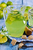 Drink of lime and tarragon Royalty Free Stock Photo
