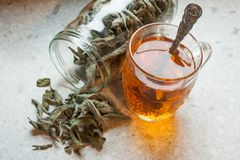 A drink made of sage and sugar royalty free stock photos