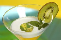 drink martini Royaltyfria Bilder