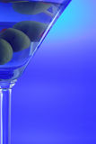 drink martini Royaltyfria Bilder