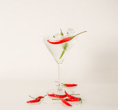 Drink in martini glass, martini drink with red and green pepper,. Seashells, martini set Royalty Free Stock Images