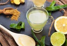 Drink med aloe vera och citroner fotografering för bildbyråer