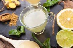 Drink med aloe vera och citroner royaltyfri bild