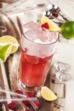 Drink med mango, björnbäret och cranberryen Royaltyfri Foto