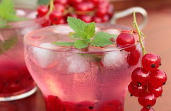 Drink with redcurrant and ice Stock Photography