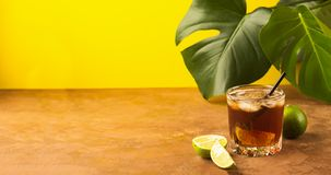 A drink of rum or cola ice cubes and juicy lime in glass goblets against background tropical green leaves. Copy space. stock photo