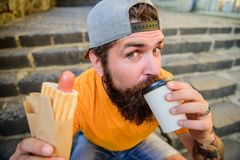 Drink something different. Caucasian hipster enjoy drinking takeaway drink with hot dog. Bearded man taking a sip of royalty free stock images