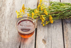 Drink from tansy Royalty Free Stock Photography