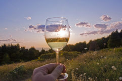 A drink to the sun Stock Photography