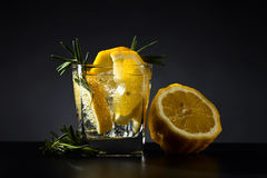 Drink with tonic, lemon and rosemary Stock Photo