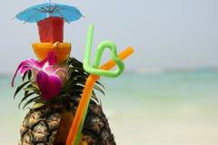 drink Tropiska frukter för coctail Arkivfoto