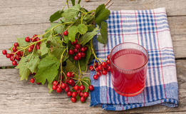 Drink of the viburnum on a wooden background Stock Photo