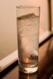 drinka gin tonik Zdjęcia Stock