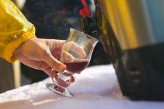 Drinkar funderade vin Arkivfoto