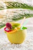 Drinkar i nya frukter på vita kiselstenar Fotografering för Bildbyråer