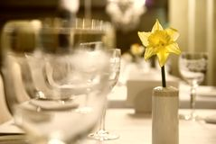 Drinkbekers met bloem op de lijst Stock Foto's