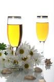 Drinkbekers met wijn en zeeschelpen Royalty-vrije Stock Foto