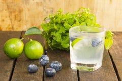 DrinkDetoxification, blåbär och lemonadvatten Frukt och hälsa close upp royaltyfri bild