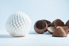 Drinkende kokosnoot en spleet bruine kokosnoten op de witte achtergrond royalty-vrije stock foto's