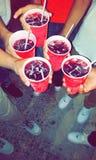 Drinkende vriendensangria Stock Foto