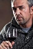 Drinkende wijn Stock Afbeeldingen