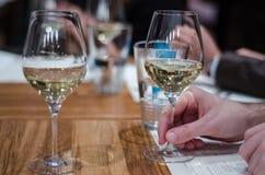 Drinkende wijn Royalty-vrije Stock Fotografie