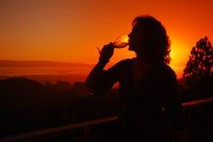 Drinkende Wijn Royalty-vrije Stock Afbeelding