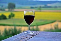 Drinkende Wijn Stock Foto