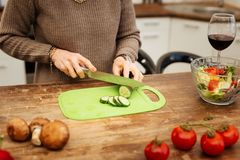Accurate good-looking lady in beige sweater chopping cucumber. Drinking alcohol alone. Accurate good-looking lady in beige sweater chopping cucumber on kitchen royalty free stock photos