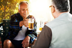 Drinking beer. Two senior friends enjoying and drinking beer Stock Image
