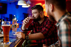 Drinking beer Stock Image
