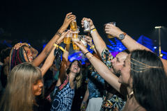 Drinking Beers Enjoying Music Festival Together. Group of Friends Drinking Beers Enjoying Music Festival Together royalty free stock image