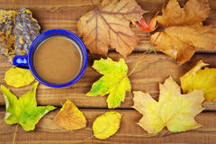 Drinking coffee in the fall Stock Photos