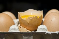 Drinking an egg Royalty Free Stock Photo