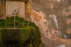 Drinking fountain in moss Royalty Free Stock Image