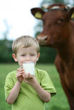 Drinking milk Stock Images