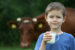 Drinking milk. 6-7 years old boy drinking milk on farm Royalty Free Stock Photo