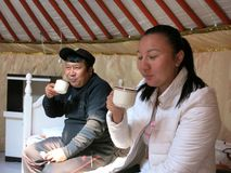 Drinking Milk Tea in Mongolia. Milk tea is Mongolia's famous beverage. Here two Mongolians drink milk tea inside a ger royalty free stock images