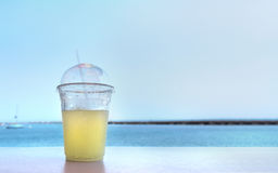 Drinking a refreshing beverage near the lake Royalty Free Stock Photo
