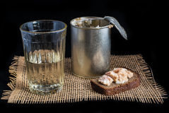 Russian army soldier ration with vodka Stock Photography