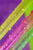 Drinking straws and bubbles Stock Photography