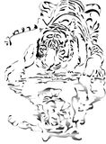 Drinking tiger. Draw ink style of drinking water tiger with reflection Royalty Free Stock Photo