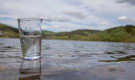 Drinking water from dam Stock Photo