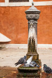 Drinking water fountain in Venice. Traditional drinking water fountain in Venice, Italy Stock Images