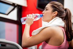 Drinking water at the gym. Gorgeous young woman with a towel on her neck drinking water from a bottle at the gym stock photos