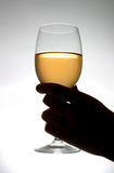 Drinking Wine. Silhouette of a hand holding a wine glass Royalty Free Stock Photos
