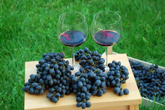 Drinking wine Stock Photo
