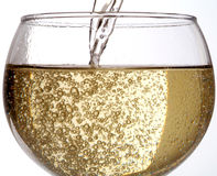 Drinking wine - Champagne. Sparkling wine of Champagne or Spumante in a glass Royalty Free Stock Photography